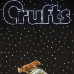 S+H Stars at Crufts